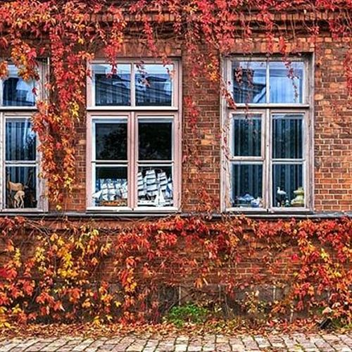 Will you be visiting Helsinki this autumn? Remember to check our offers from our website and book your next staycation! 🍁🍃🍂 #hotelfabian #myhelsinki #wedontmindifyoustaylonger 📸: Yiping Feng & Ling Ouyang, @myhelsinki