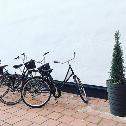 All our beloved guests are welcome to enjoy Helsinki by bikes, offered for rent free of charge ☺️ Helsinki has great biking facilities throughout the whole city 🚲 Just ask your bike key from the reception and have a nice ride! ⠀ • #hotelfabian #wedontmindifyoustaylonger #bikesforrent